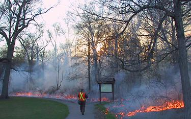 A prescribed burn on 26 April 2001.