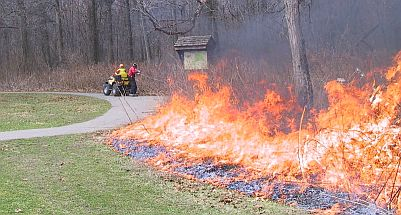 April 6 prescribed burn at Ojibway