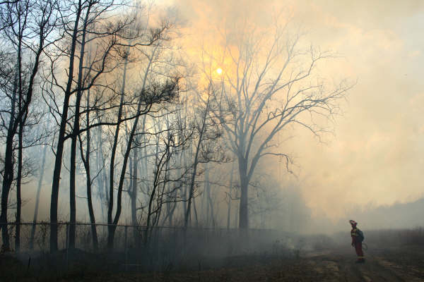 prescribed burn at Black Oak Heritage Park, photo by Shane Butnari