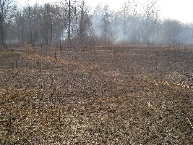 image of prescribed burn of 34 acres on April 1, 2010