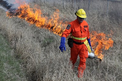 prescribed burn by MNR
