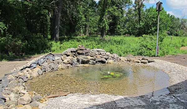 pond, July 13, 2011 photo